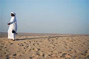 Charterferie Dubai - Ørken